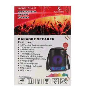 cassa karaoke con microfono ricaricabile 650W