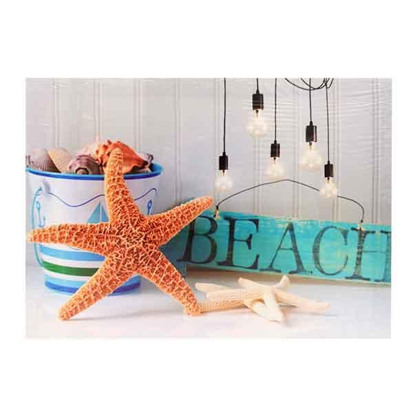 quadro-beach-stella-di-mare