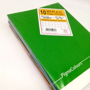 10 quaderni pigna maxi a quadretti grandi 10mm