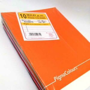 10 quaderni max pigna quarta e quinta elementare e superiori